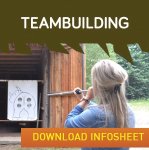 Teambuilding widget