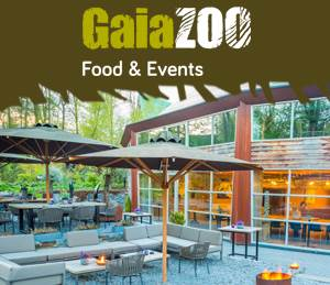 Food en Events 2018